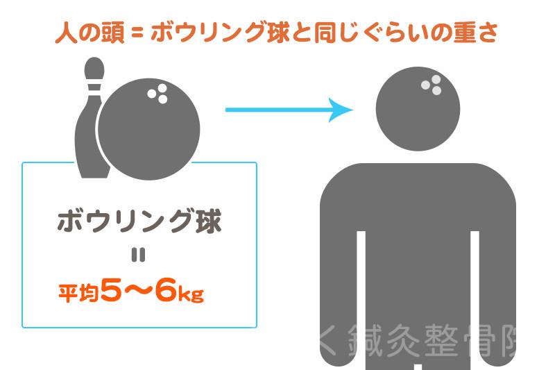 人の頭はボウリング球と同じ重さ